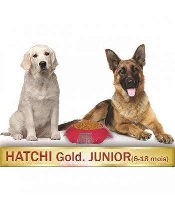 hatchigoldjunior6-18moiskor...