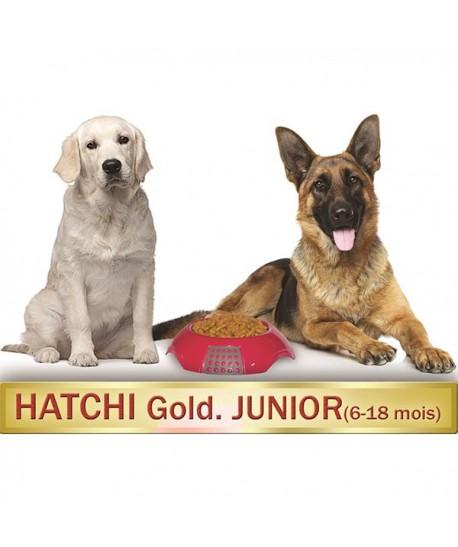 hatchigoldjunior6-18moiskormotekh