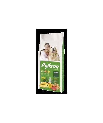 PYLKRON CHIEN ADULT